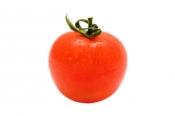 tomato-1396766-m